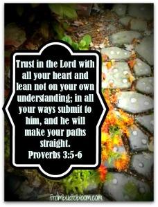 Garden Pathway Proverbs 3 5-6