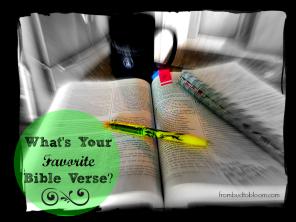 Study the Bible Scripture Verse1