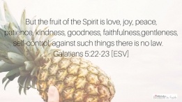 Fruit of the Spirit Galatians 5:22-23