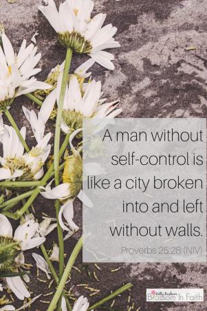 Self Control- Proverbs 25:28