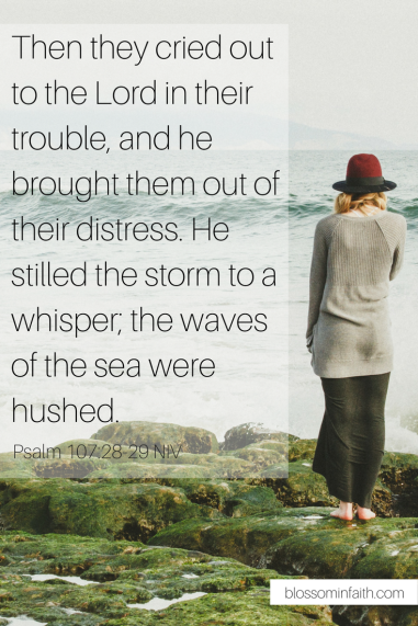 How do we overcome the desire to give in to negative emotions? This devotion encourages us to seek the only one who can silence our fears, doubts, and insecurities. Psalm 107:28-29